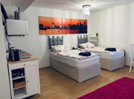 Private, dog-friendly room- easy access to city centre and trade fair- free parking, דירה במינכן