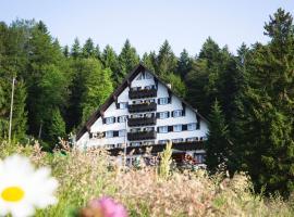 Hotel Tisa Pohorje, hotel in Hočko Pohorje