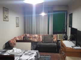 Apartamento Inteiro Especial para Família, apartment in Porto Alegre