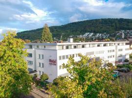 ZUM ZIEL Hotel Grenzach-Wyhlen bei Basel, hotel in Grenzach-Wyhlen