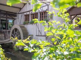 Le Moulin Du Landion Hôtel et Spa, hôtel à Dolancourt près de: Nigloland