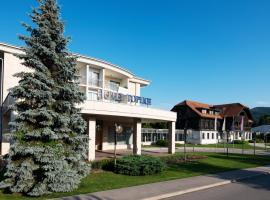 Hotel Toplice - Terme Čatež, hotel u Čatežu ob Savi