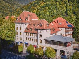 Hotel Rina Cerbul, hotel din Sinaia