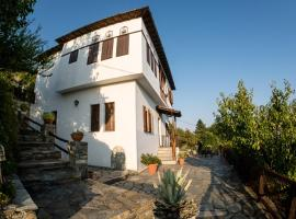 Pelion House with Wonderful View, hotel in Vyzitsa