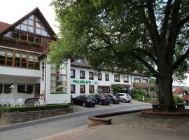 Hotel Waldblick, отель в городе Донауэшинген