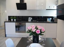 Black & White Apartament, apartment in Toruń
