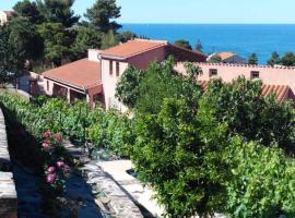 nôa Joli F3 Avec Terrasses Et Vue Mer, pet-friendly hotel in Collioure