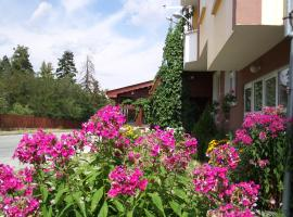 Guest House Zodiac, hotel in Samokov