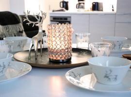 Nordica Design Residence Rovaniemi, huoneisto Rovaniemellä