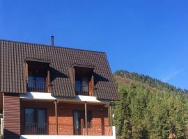 Hotel Shumeri, hotel in Mestia