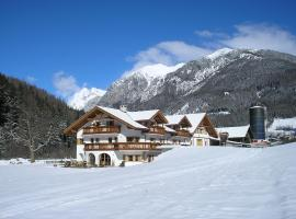 Appartement Wolfenhof, cabin in Colle Isarco