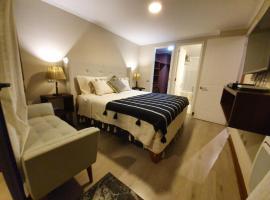 Mojens Suites Santiago, apartment in Santiago