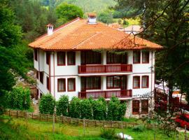 Hotel Mitnitsa and TKZS Biliantsi, hotel in Arda