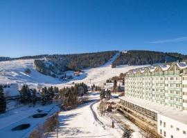 Best Western Ahorn Hotel Oberwiesenthal – Adults Only, hotel in Kurort Oberwiesenthal