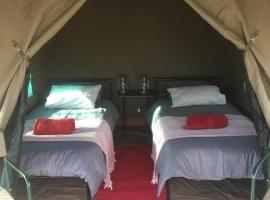 Madisa Bush Camp, luxury tent in Damaraland