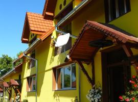 Casa Dușe, hotel din Cârţişoara