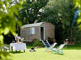 Mollies Hut, farm stay in Frome
