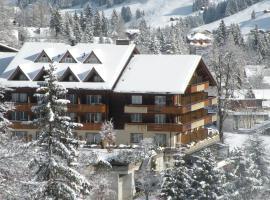 Hotel Steinmattli, hotel in Adelboden