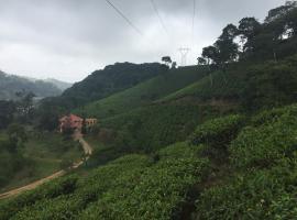 Tea Trees Service Villas, hotel in Vythiri