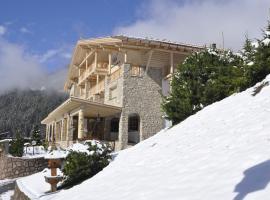 Hotel Portillo Dolomites 1966', hotel in Selva di Val Gardena