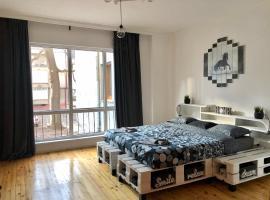 Spacious modern vintage flat in the heart of Sofia, апартамент в София