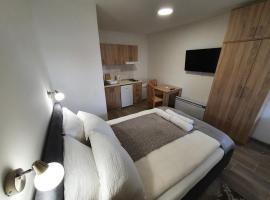 S&M Apartmani Sokobanja, hotel u gradu Soko Banja