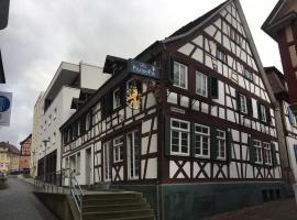 Hotel Löwen, hotel in Lahr