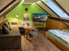 Gemütliche Dach-Whg; Smart TV; grandioser Ausblick, apartment in Bad Elster
