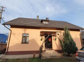 Casa Erhan in Bucovina, hotel in Câmpulung Moldovenesc