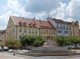 Hotel Česká Koruna, hotel v destinaci Děčín