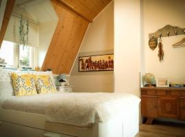 Charming House in Historic Haarlem, holiday home in Haarlem