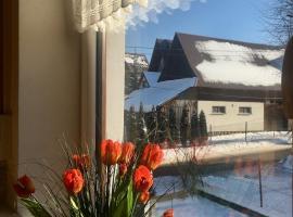 U Wiesi, budget hotel in Poronin