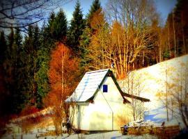 Dziewięćsił-domek w górach, self catering accommodation in Duszniki Zdrój