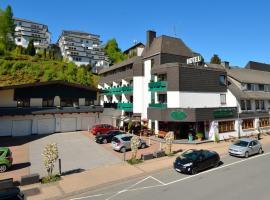 Hotel Central, hotel in Willingen