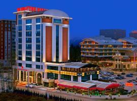 The Merlot Hotel Eskisehir, отель в Эскишехире