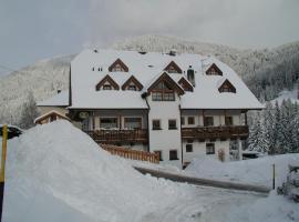 Residence Rogger, apartment in Dobbiaco