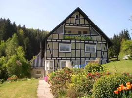 Haus Wald-Eck, apartment in Schmallenberg