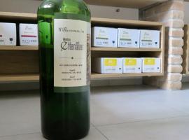 Weinbau Ettenauer, Hotel in Rohrendorf bei Krems