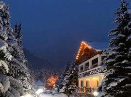 Hotel Usengi, hotel in Elbrus