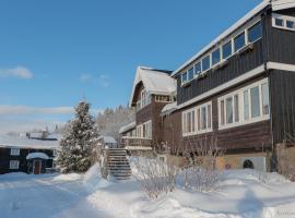 Eikre Fjellgård, hotell i nærheten av Golsfjellet i Hemsedal