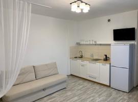 Светлые Апартаменты в самом центре города, hotel in Novosibirsk