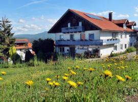 Gästehaus am Goldberg, Hotel in Riedlhütte