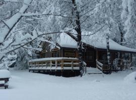 Cabañas Alto la Invernada, campground in Pinto