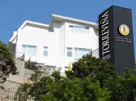 Hotel Torreviña, hotel en Viña del Mar