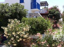 Village house in Paros, hotel in Drios