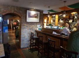 Fitzgeralds Bar and B&B, hotel near Ballyhoura Country, Kilmallock