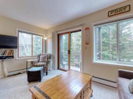 Wildwood Suites Condominiums, apartment in Breckenridge