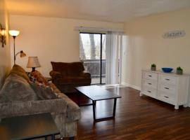 Apartment living 2 bed and bath, vacation rental in Chattanooga