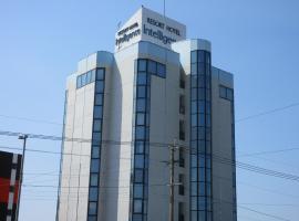 Kagoshima Intelligence, hotel in Kagoshima