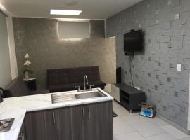Suites André Confort Ejecutivo, hotel in Aguascalientes